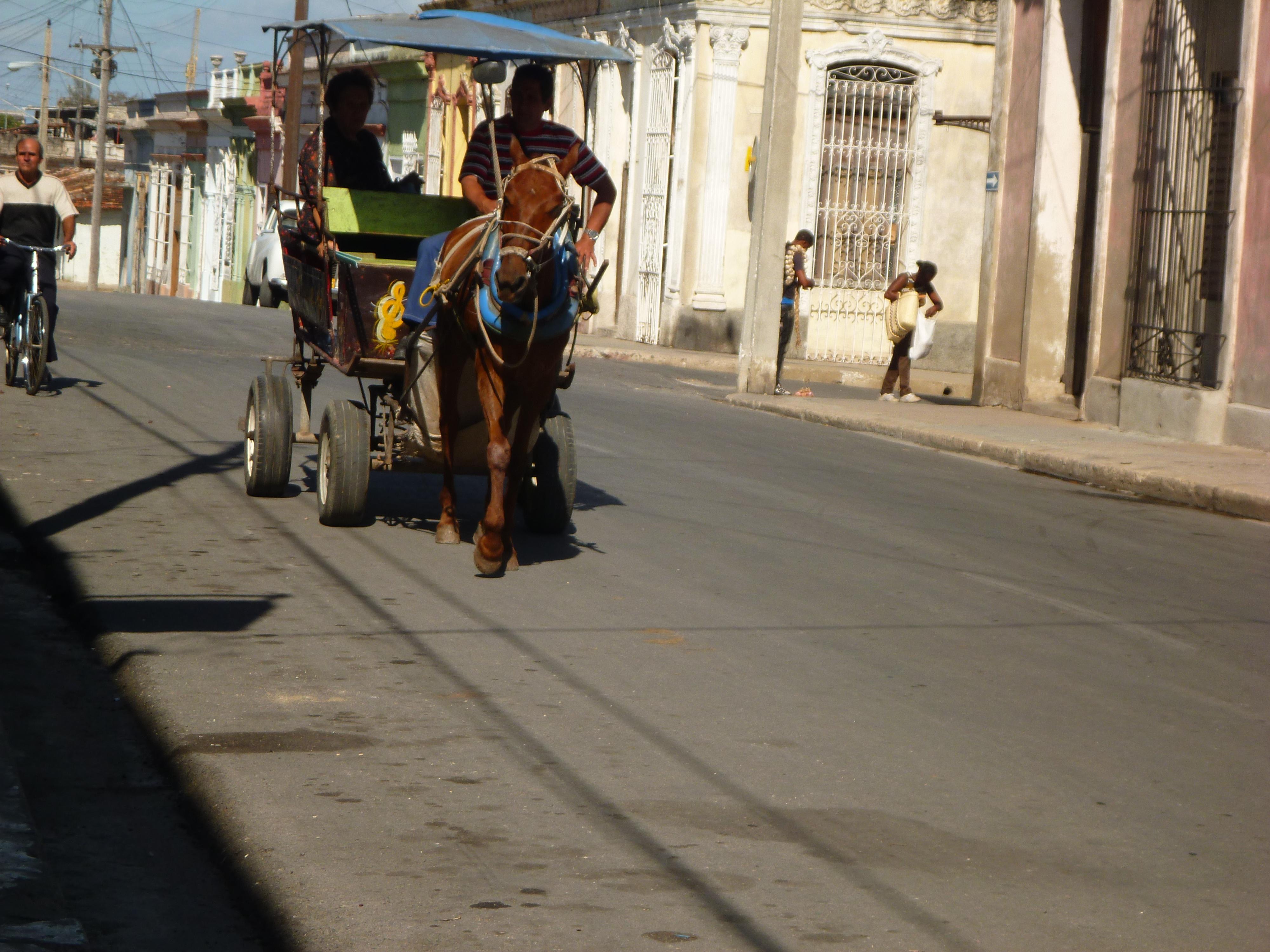 Escort girls Cienfuegos